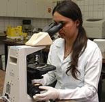 Laboratórios de excelência para imersão na prática